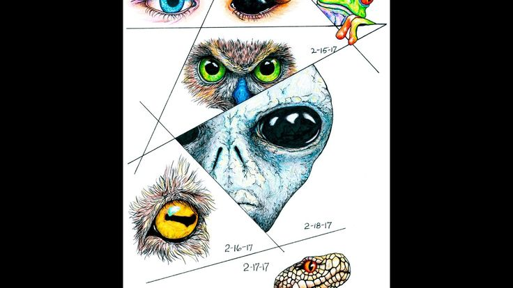 Daily Diary Week 7 - Basic How To Draw and Color Eyeballs Tutorial