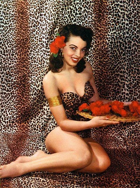 leopard, 1950's