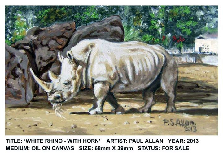 """White Rhino - with horn"" 2013 - Oils on Canvas - 39x68mm (For Sale)"