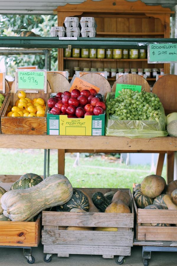 Farmer's Market: Pick Farmers Market, Roots Fruits Project, Farm Stands Fare, Farmers' Market, Vegetable Garden, Food Retail