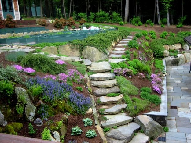 19 best images about terraced garden ideas on pinterest for Terrace vegetable garden ideas in tamil