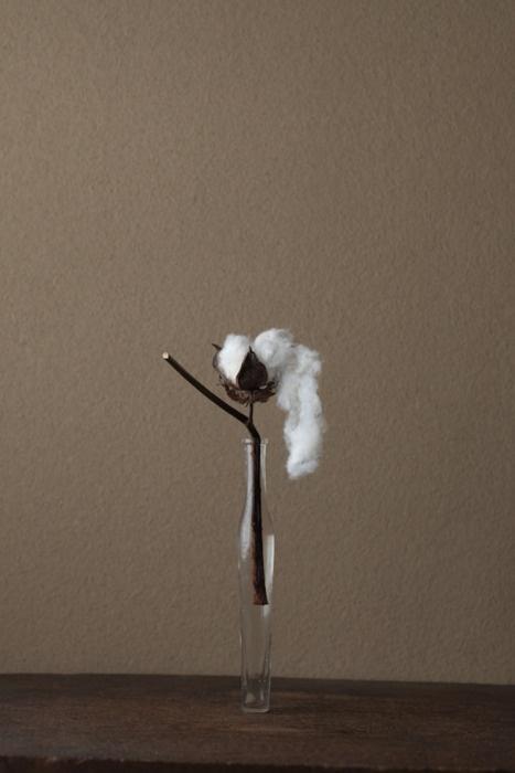 Toshiro Kawase-- cotton