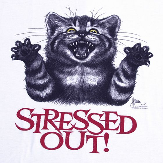 Stressed Out Nightshirt