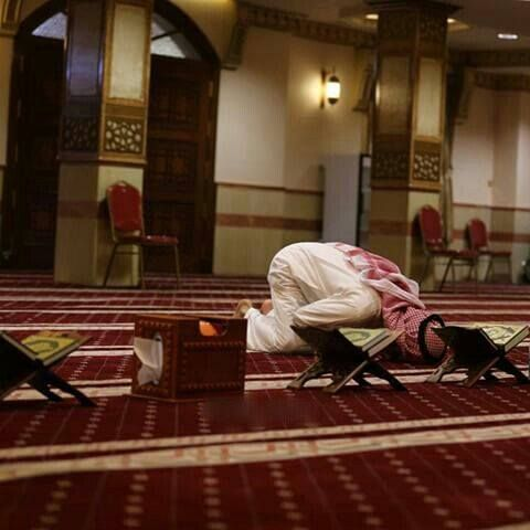 #Коран «Среди людей Писания есть праведные люди, которые читают аяты Аллаха по ночам, падая ниц»