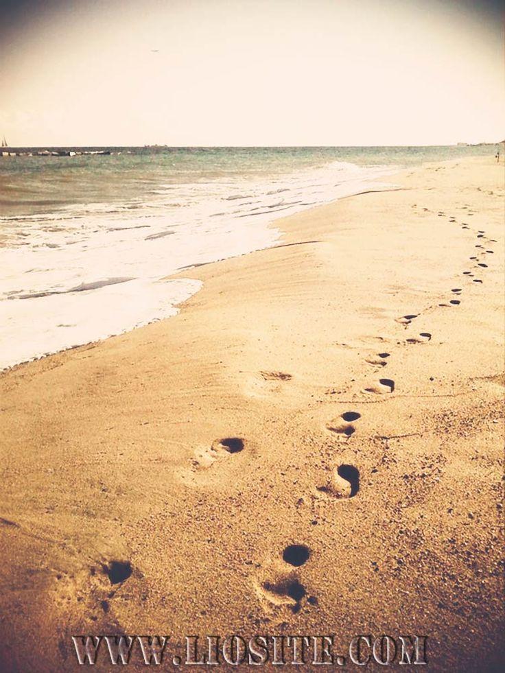 Alessandro Baricco - Sai cos'è bello, qui? Un luogo di sogno, il luogo dove puoi non pensare a nulla   #alessandroBaricco, #OceanoMare, #terradinessuno, #pace,#marea, #liosite, #citazioniItaliane, #frasibelle, #sensodellavita,#ItalianQuotes, #perledisaggezza, #perledacondividere, #citazioni,