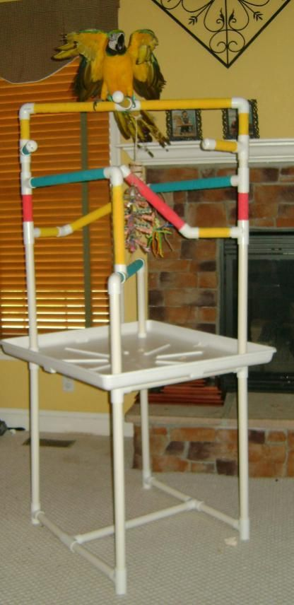 diy macaw play stands | ... my Macaw size PVC play gym - Parrot Forum - Parrot Owners Community