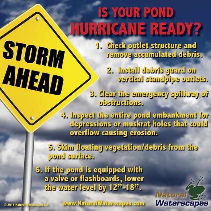 Protect your pond from hurricane damage.  Take these easy steps before the storm arrives to protect pond embankments and outlet structures.