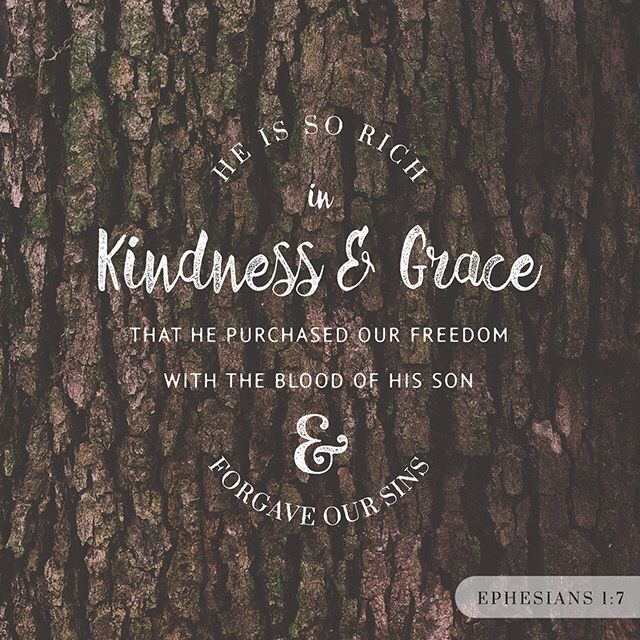Verse of the Day http://bible.com/114/eph.1.7.nkjv
