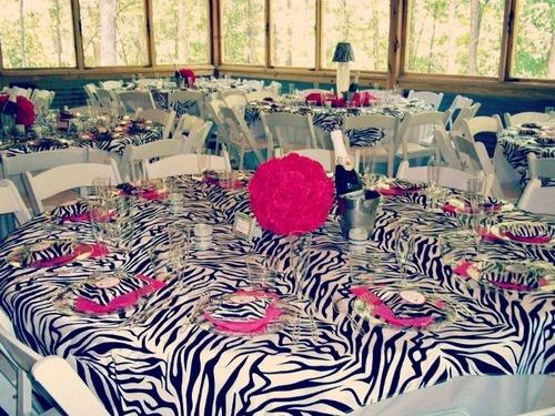 41 best zebra stuff images on pinterest zebra stuff zebra wild theme bachlorette party her bridal shower junglespirit Images