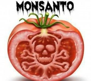 How Do We Stop Monsanto? It's as Easy as This...
