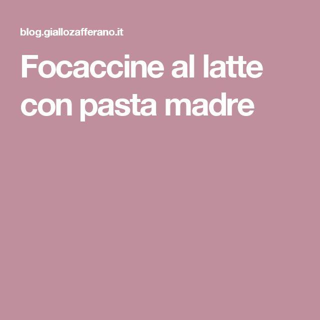 Focaccine al latte con pasta madre