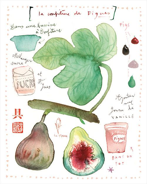 Fig marmalade recipe Food print Watercolor fruit by lucileskitchen, Etsy