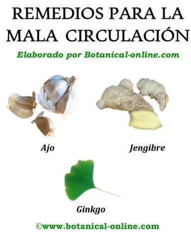 17 best images about varices y mala circulacion remedios - Medias para la circulacion ...