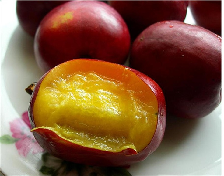 Red Coat Plum or Governor Plum - I've only seen these in JA and just remember sitting in the tree of my parents' back-yard as a youth and eating too many of them. Delicious!!!
