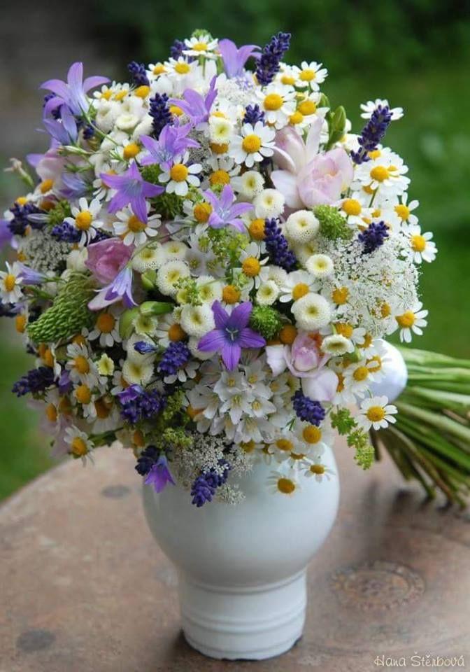 Krásne kvety fényképe.