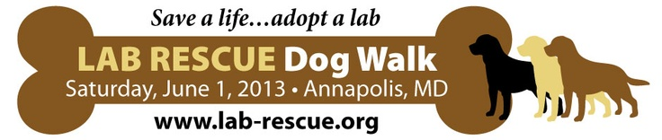 Save The Date 6/1/13 #labrador #rescue #annapolis #labrescue