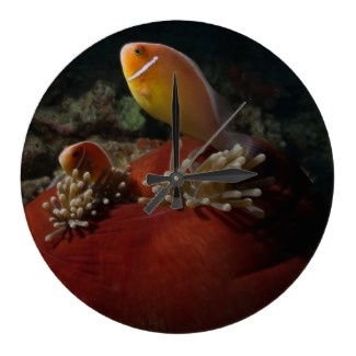 A beautiful wall clock featuring a gorgeous pair of clownfish nestled in their balled anemone home.