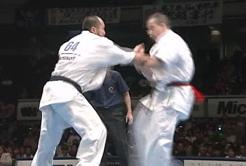 Kyokushin karate, remember my full contact days well, great way to learn to take a punch or kick and to realise that the right blow will have you out cold in a second.