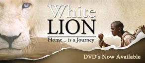 KEVIN RICHARDSON THE LION WHISPERER: Home: Concienciación Animales, Animal Kingdom