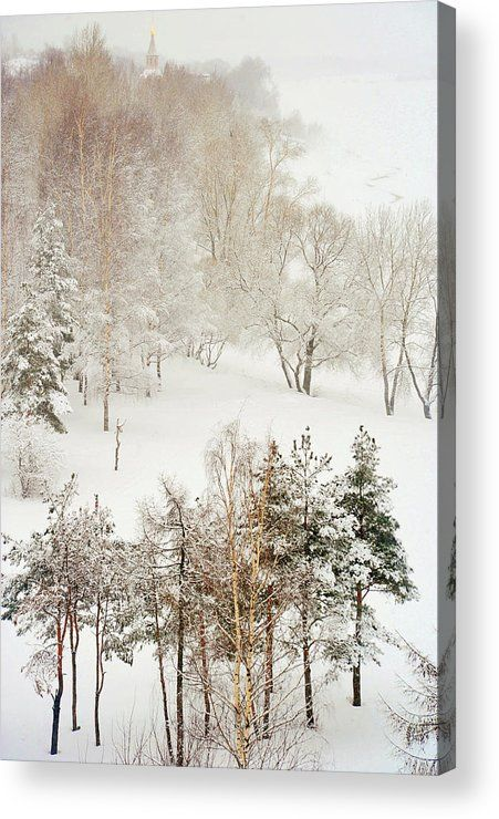 Acrylic Print of photograph Winter Delight by Jenny Rainbow. Charming winter scene with lacy trees after heavy snow fall in Russian countryside.  This work bringing the tenderness and lightness with soothing harmonic vibes to your home.  A beautiful idea for Christmas gift for family or for friends.  Available as canvas, metal, acrylic, wood and framed prints. To buy this print simply click on PIN. #JennyRainbowFineArtPhotography #Christmas #Winter #HomeDecor
