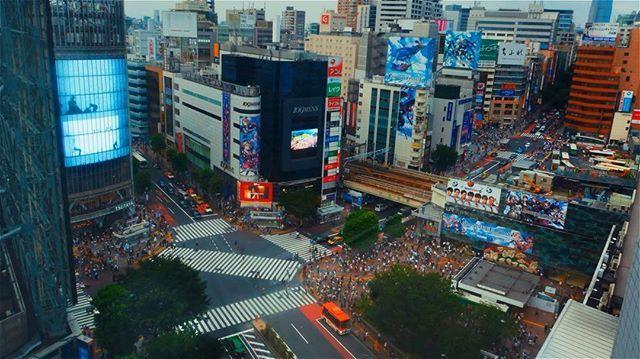 #timelapse #tokyo #napedzaniswiatlem #shibuya #shibuyacrossing #japan