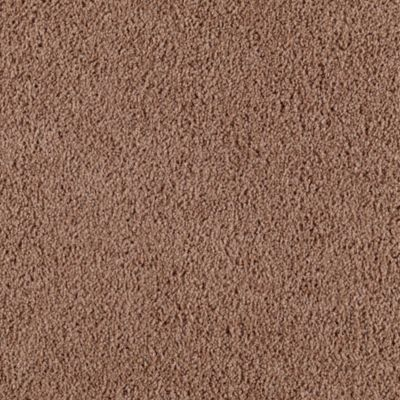 1000 images about chocolate wall amp carpet on pinterest carpets
