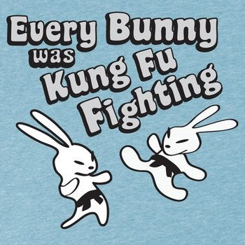 :) For Amy, my favorite kung fu fighter!