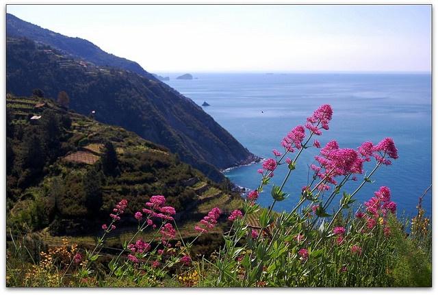 near Cinque Terre Italy