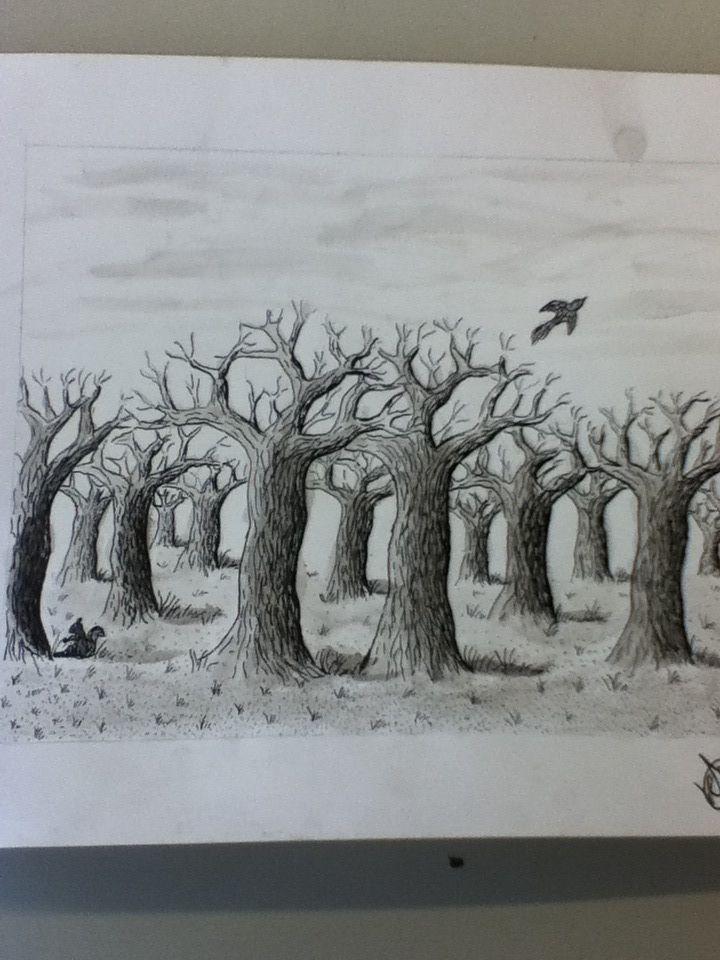 Voor het vak tekenen bomen getekent