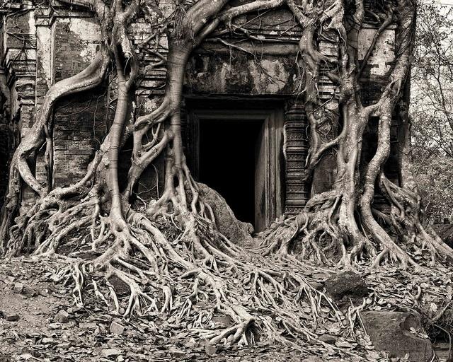 Cambodia - Koh Ker and Beng Mealea