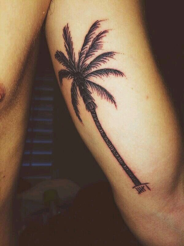Jc Caylen's new tattoo. It symbolizes the O2Ltour to Hawaii and the 6 slashes stands for everyone in O2L
