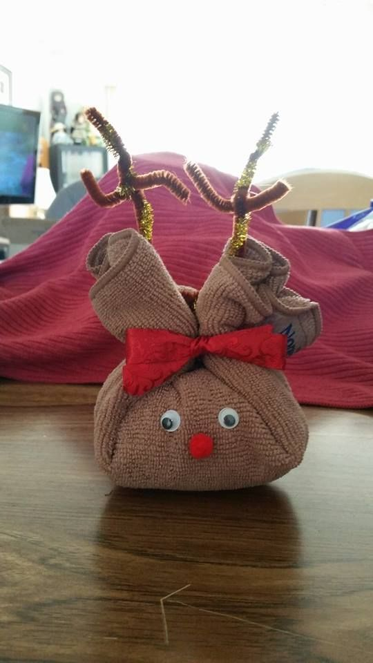 Norwex Consultant Sandra Munnis with the Body Pack Cloth Reindeer gift idea. #gift. To order visit http://www.lorrainehewson.norwex.biz/