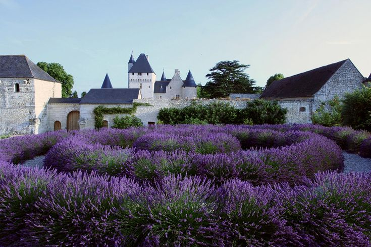 Chateau du Rivau, Lemere, Centre, France