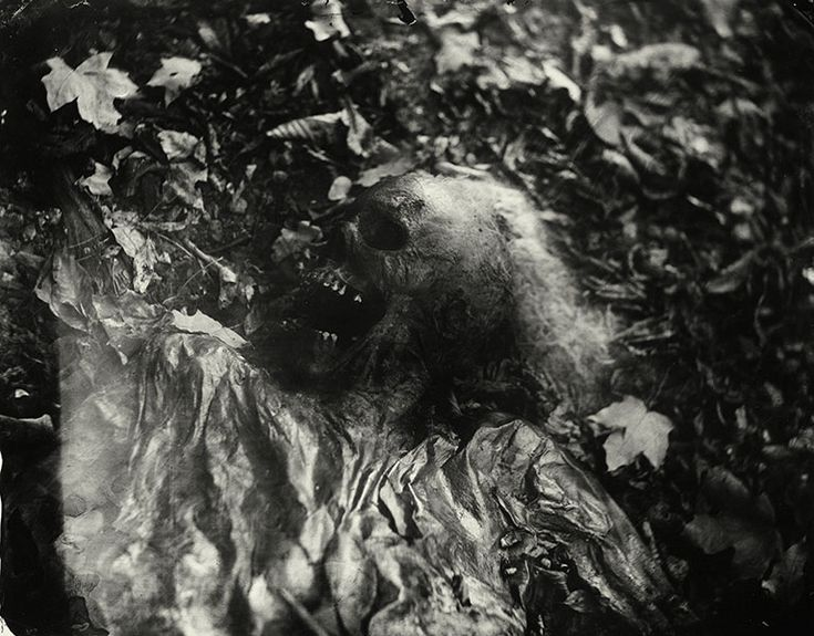 One of Sally Mann's photos from a Body Farm. From her book What Remains - http://www.amazon.com/What-Remains-Sally-Mann/dp/0821228439/ref=wl_it_dp_o_pC_S_T2?ie=UTF8=I2XZ3IA3VVGKP4=37HH34KDKP57W