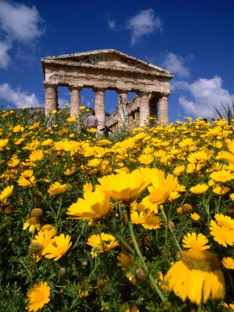 temple of zeus olympia. agrigento, sicily. i have a thing for ancient architecture in nature.