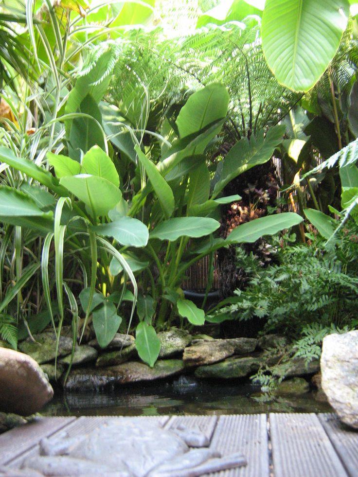 Tropical Garden Escorial
