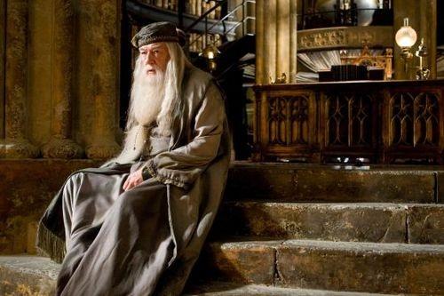 Com Alvo Dumbledore, aprendi que devo lutar até o fim
