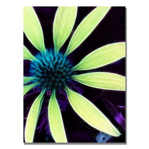 Green home décor is super cute and trendy especially green  wall art. Easily deck the walls of your  home with cute green wall clocks, green canvas art, and green metal art. Mix and match different textures to create  depth. You find all shades of green from emerald, lime, forest and even  Jade.       Trademark Fine Art Lime Green Coneflower by Kathie McCurdy Canvas Wall Art, 26x32-Inch