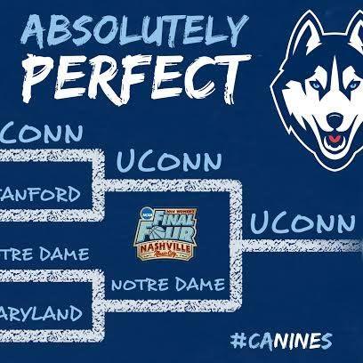 17 best UCONN Huskies Menu0027s and Womenu0027s Teams images on Pinterest - uconn resume template