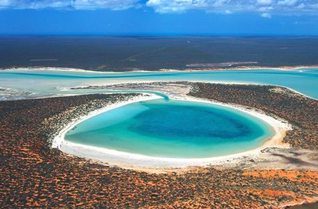 'Australia, Western Australia, Shark Bay' by Danita Delimont on artflakes.com as poster or art print $17.33
