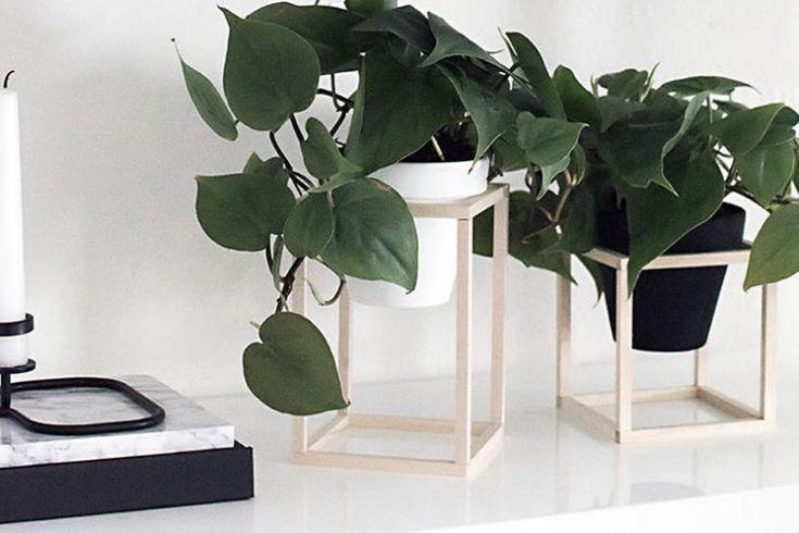 1000 id es sur le th me supports pour plantes sur pinterest stands de plantes d 39 int rieur - Support pour plantes d interieur ...