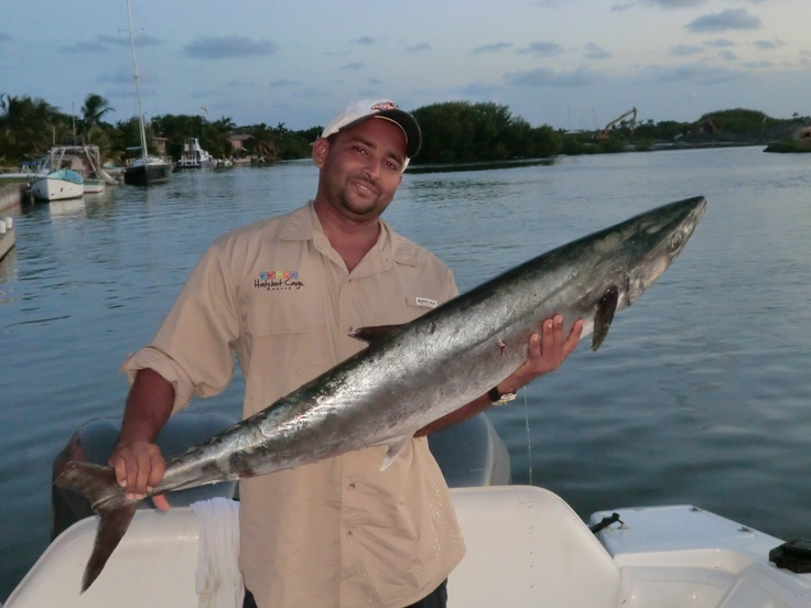 Fishing options at hatchet caye 39 s island resort near for Deep sea fishing belize