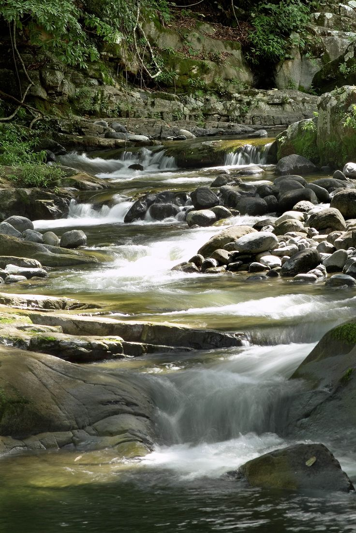 Allyn River rapids, Chichester State Forest, NSW. Great spot for a Summer splash, and best of all - it's free.