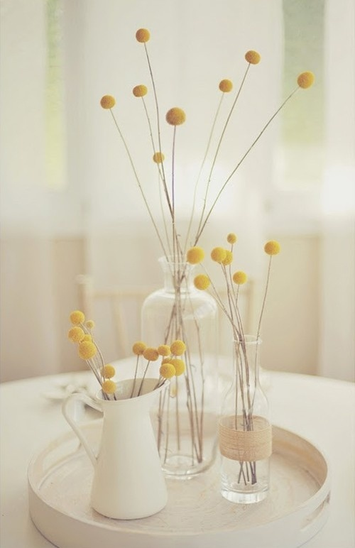 Love billy buttons! I could see these on opposite sides of the mantle in a vase. Brings a tiny color pop.