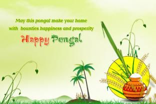happy pongal wishes with quotes images