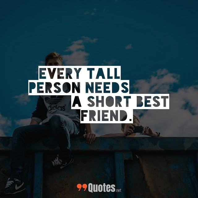 Cute Short Friendship Quotes: Every tall person needs a ...