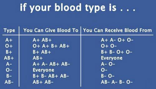 What are the Different Blood Types and Why are They Important? Most of us have one of a small number of common blood types.  The eight different types of blood have subtle differences that have maj...