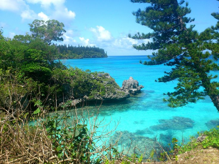 What to do in Mare, New Caledonia - New Caledonia