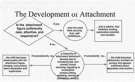 bowlby's ethological attachment theory One such perspective is bowlby's (1969/1982) ethological attachment theory,  which provides an essential framework for understanding the impact of early.