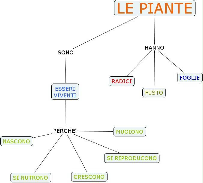 mappa piante 02.jpg